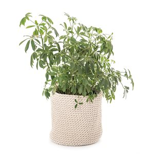 Capucine cream knitted plant pots